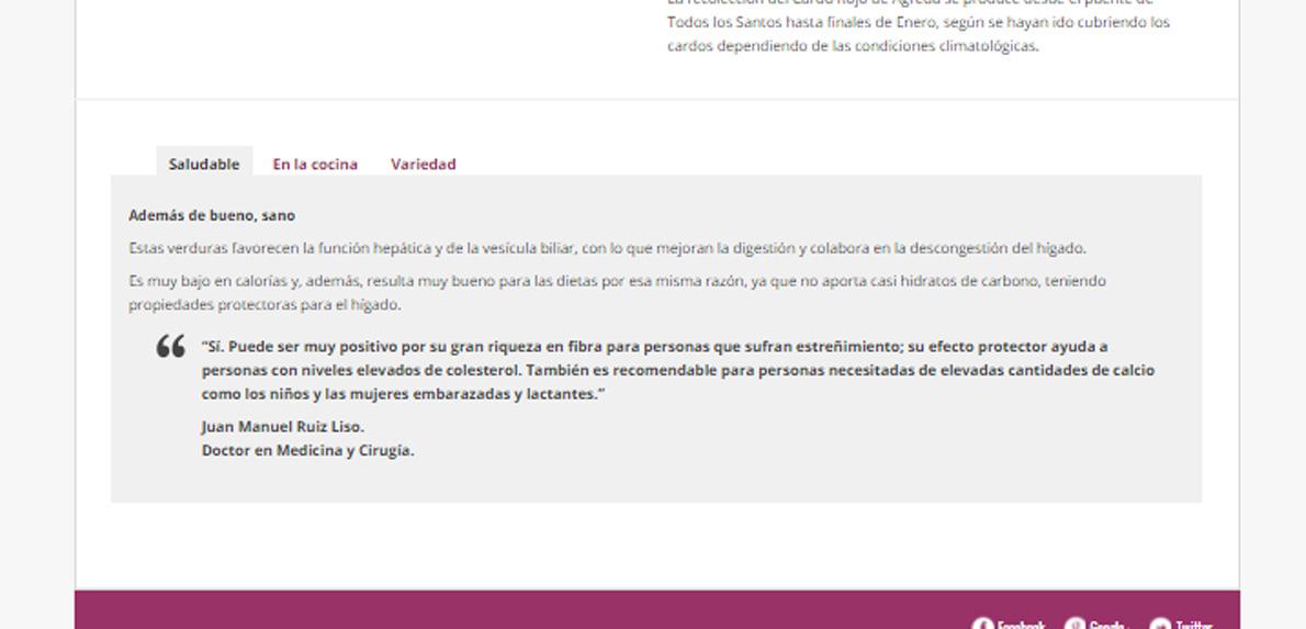 diseno-web-familia-del-rio-pestanas